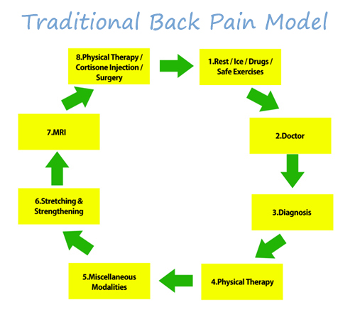 fix my back pain viscous cycle review