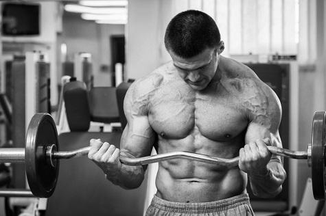 biceps-article